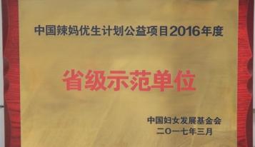 2017年中国辣妈优生计划公益项目2016年度省级示范单位