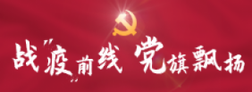 """战""""疫""""前线,党旗飘扬"""